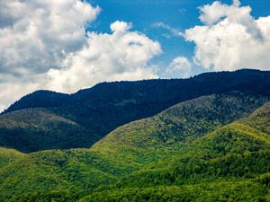 View Toward the Balsams