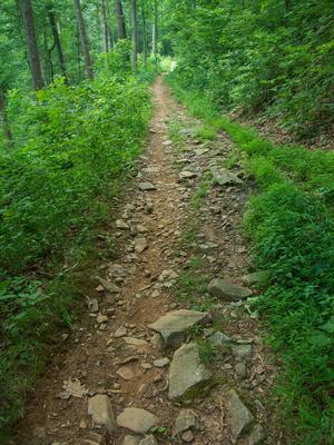 Sidehill Trail