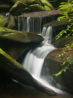 Small falls on Caney Bottom Creek