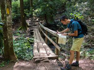Bridge on the Cove Creek Trail