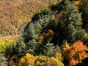 North Face of Looking Glass Rock