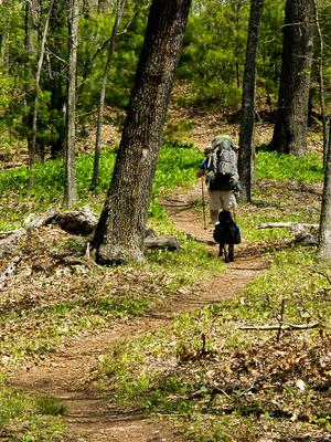Backpacker and dog on the Appalachian Trail