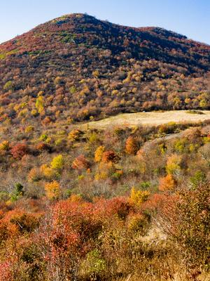 Fall Color Below Sam Knob