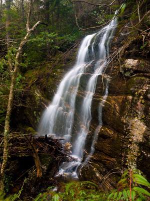 Bottom of Mount Hardy Falls.