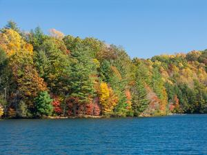 Lake Julia in Fall Color