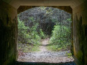 Tunnel on the Visitor Center Loop