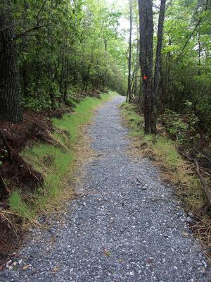 Gravel Start to the Rainbow Falls Trail