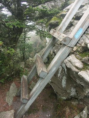 Small Ladder on the Grandfather Trail