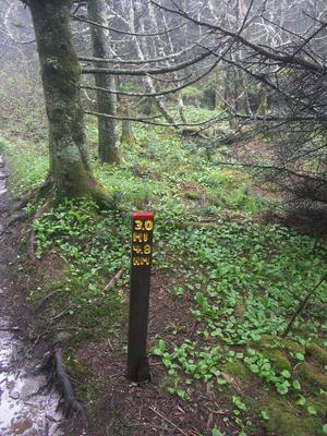 3-Mile Marker on the Profile Trail