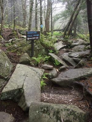 Profile Trail at Shanty Spring