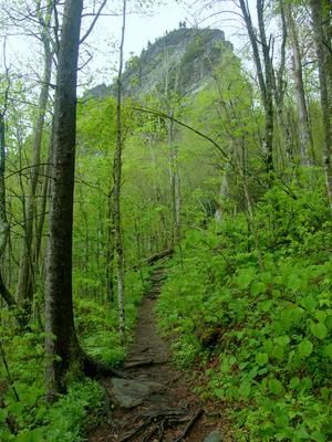 The Profile Trail winds its way up the ridge containing the rock features that give Grandfather Mountain its name.