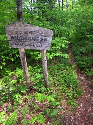 The Middle Prong Wilderness boundary on the Haywood Gap trail is marked by this old wood sign.
