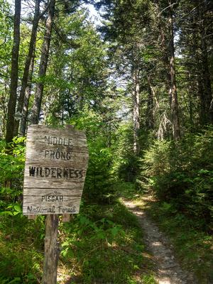 Middle Prong Sign on the Mountains to Sea Trail
