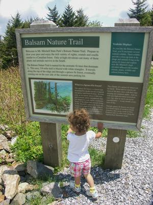 Balsam Nature Trail Sign