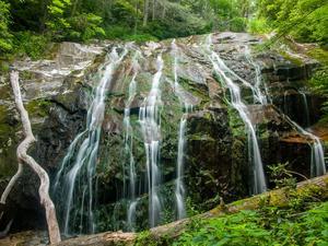 Glen Burney Falls