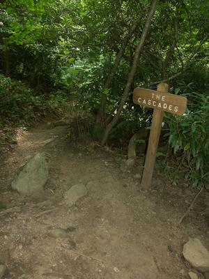 Sign for The Cascades on the Glen Burney Trail