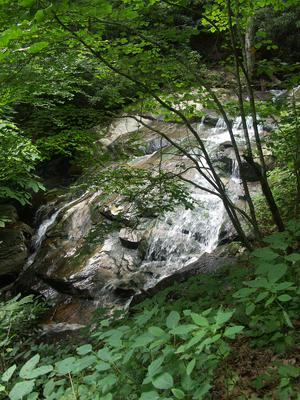 The Cascades on the Glen Burney Trail