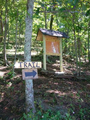 Start of the Bearwallow Mountain Trail