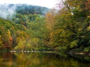 Wilson Creek, Fall Color, and Misty Mountains
