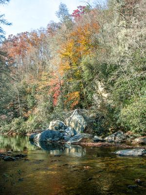 Fall Color on the South Mills River