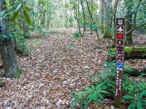 Sign at the Bottom of the Wagon Road Gap Trail