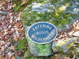 Entering Boggs Wilderness