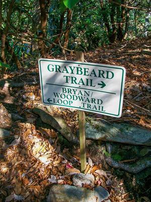 Graybeard/Bryan Woodward Loop Split