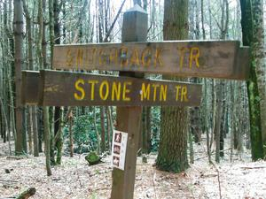 Switchback/Stone Mountain Trail Junction