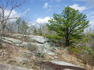 Rocky Summit of Stone Mountain