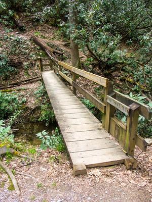 Art Loeb Trail Start