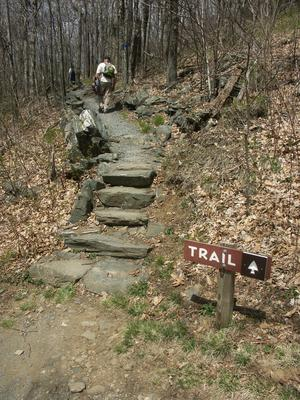 Trail Sign and Steps