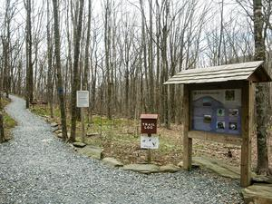Signs at the Elk Knob Trailhead