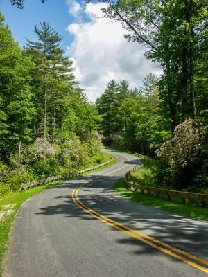 Gorges State Park Main Entrance Road
