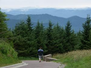 Mount Mitchell Summit Path