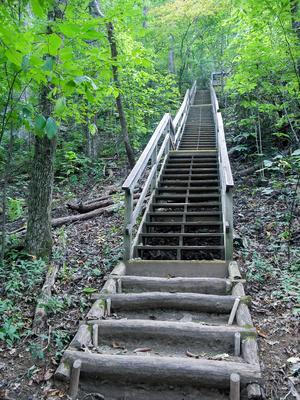 Four Seasons Trail Steps