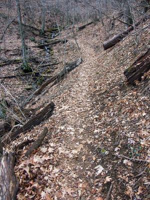 Buck Spring Maintained Trail