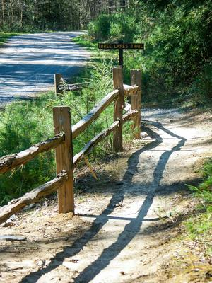 Fence at the Start of the Three Lakes Trail