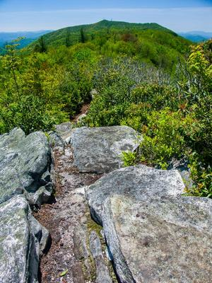 View from the A.T. on Firescald Ridge, toward Camp Creek Bald