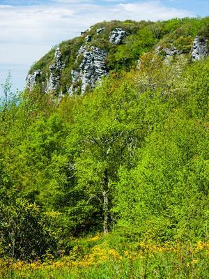 Blackstack Cliffs near Camp Creek Bald