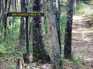 Wintergreen Falls Trail Sign