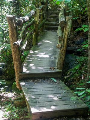 Wood Bridge and Steps on the Gate Trail