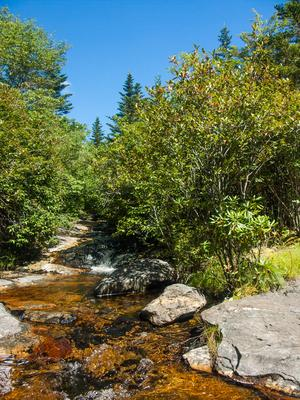 Stream Crossing on Little Sam Trail