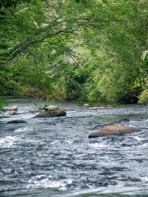 Little River below High Falls