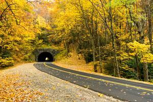 Tanbark Ridge Tunnel in Fall