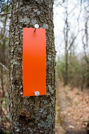Orange Blaze on the Blackrock Trail