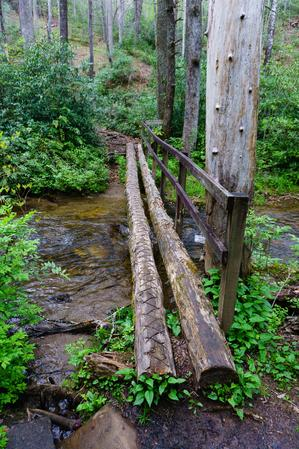 Log bridge over Avery Creek