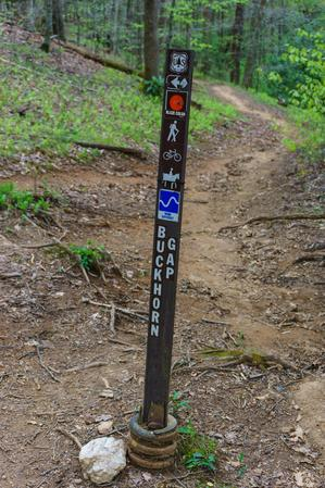 Buckhorn Gap trail sign at the upper Twin Falls intersection.