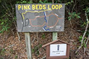 Trail Sign and Map at Pink Beds