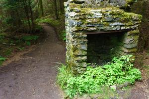 Chimney beside the Appalachian Trail