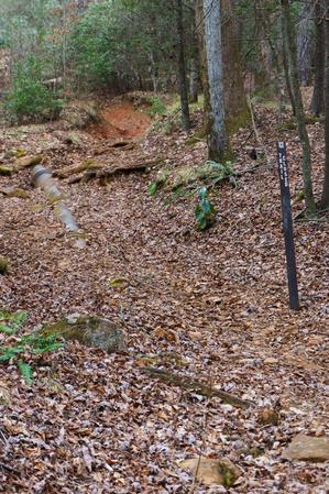 Lower Trace Ridge Old Eroded Trail